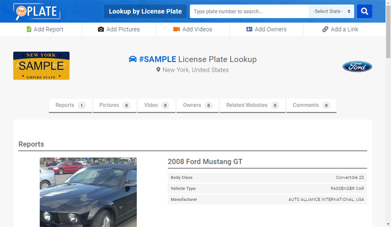 View License Plate Report Page